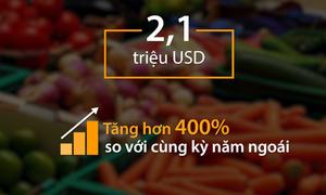 Top 5 nước nhập nhiều rau quả Việt Nam