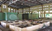 Hai chợ tiền tỷ ven Sài Gòn bỏ hoang hơn 10 năm