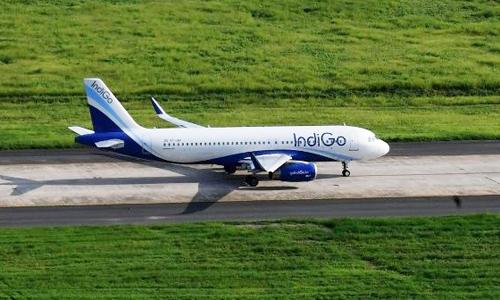 Một máy bay của IndiGo trên đường băng tại Ấn Độ. Ảnh: AFP.