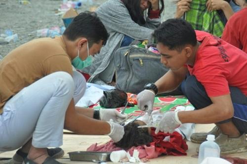 Nhân viên y tế chăm sóc cho một đứa trẻ ở Palu bị thương sau thảm họa ngày 28/9. Ảnh: AFP.
