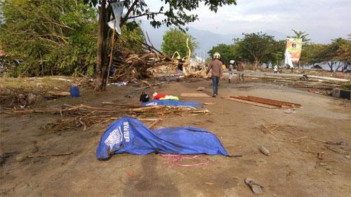 Thi thể nạn nhân được phủ vải xanhtrong vụ động đất, sóng thần ở thành phố Palu, đảo Sulawesi, gần bờ biển sáng 29/9. Ảnh: AFP.