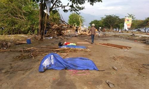 Thi thể nạn nhân được phủ vải xanh trong vụ động đất, sóng thần ở thành phố Palu, đảo Sulawesi, gần bờ biển sáng 29/9. Ảnh: AFP.