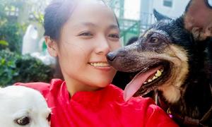Cô gái Sài Gòn nhặt gần 100 chú chó bệnh tật về nuôi dưỡng