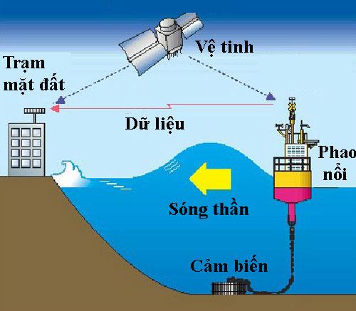 Nguyên lý hoạt động của hệ thống cảm biến, phao nổi khi phát hiện sóng thần. Đồ họa: ResearchGate.
