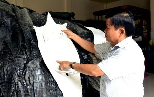 Ông Mai thành công với mô hình nuôi cá sấu thương phẩm và sản xuất các mặt hàng từ da để xuất khẩu. Ảnh: Ly Linh.