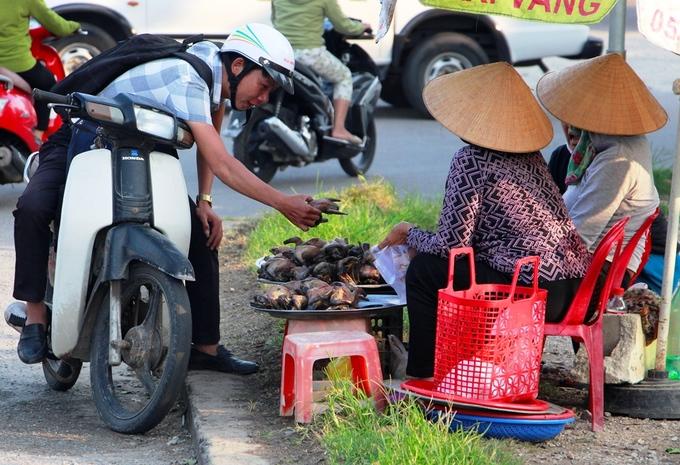 Nạn săn bắt cò trên cánh đồng ở Thừa Thiên Huế