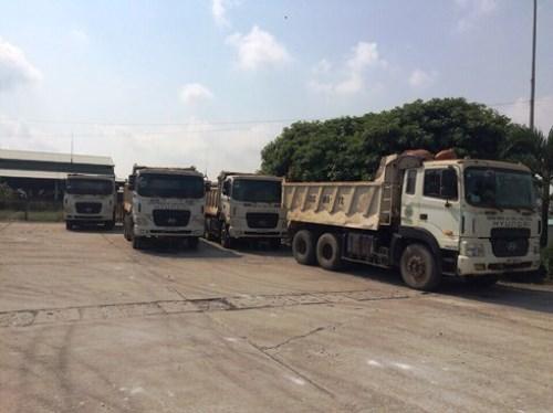 14 xe tải vi phạm bị tạm giữ. Ảnh: T.C