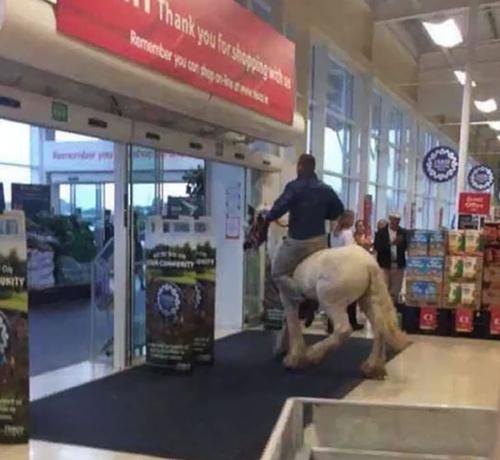 Cưỡi ngựa vào siêu thị.