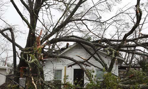 Một ngôi nhà ở thành phố Panama City, bang Florida, Mỹ, bị cây đổ trúng khi bão Michael đổ bộ. Ảnh: AFP.