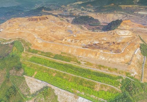 Cỏ VA06 được trồng ở bãi thải Núi Pháo (Thái Nguyên). Ảnh: Ban tổ chức cung cấp