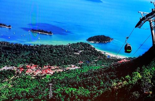 Chuyên gia lo hệ sinh thái vườn Quốc gia Bạch Mã bị phá hủy - ảnh 3