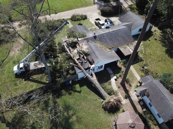 Hậu quả của cơn bão Michael tại Alabama. Ảnh: AL.