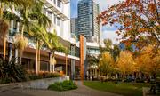 Du học tại Học viện Quản lý Khách sạn William Angliss, Australia