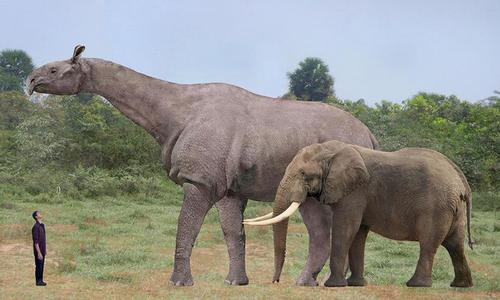Nguyên nhân động vật tiền sử có kích thước khổng lồ