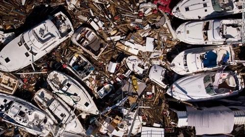 Người Việt ở Mỹ giúp đồng bào khắc phục hậu quả bão Michael