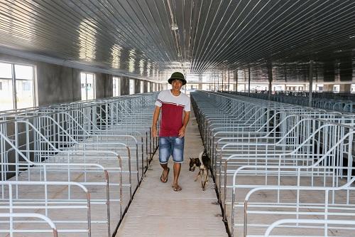 Bên trong một dãy nhà chăn nuôi đã được lắp các trang thiết bị. Ảnh: Quỳnh Trần