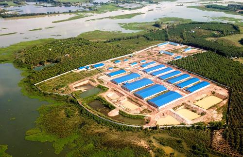 Trang trại heo nằmcạnh hồ Trị An. Ảnh: Quỳnh Trần.