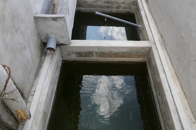 Trại heo 'khủng' xây trái phép cạnh hồ Trị An nhìn từ trên cao