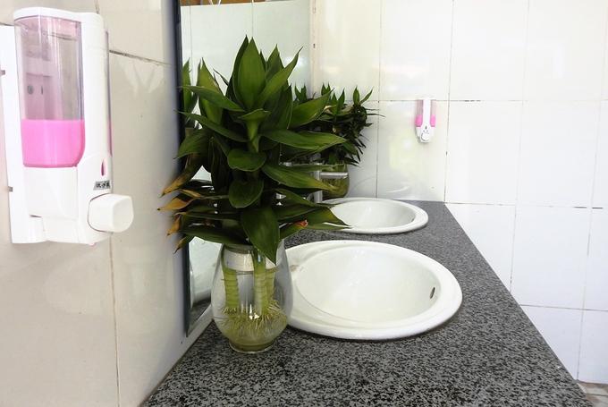 Nhà vệ sinh '5 sao' ở trường học Quảng Ninh