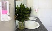 Học sinh thích thú vì toilet trường sạch đẹp như ở nhà