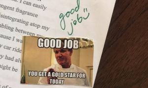 Cô giáo Mỹ được khen ngợi vì dùng ảnh chế để chấm điểm