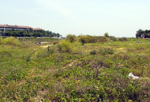 Đà Nẵng thu hồi dự án ven biển liên quan đến Vũ 'Nhôm'