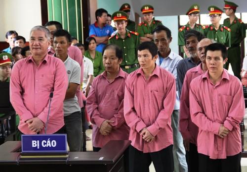 9 người phá 64 ha rừng ở Bình Định lĩnh án
