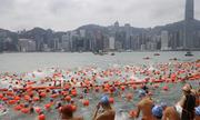 Hơn 3.000 người cùng bơi qua cảng Hong Kong
