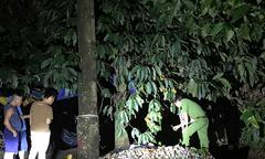 Nam thanh niên nghi bị sét đánh chết khi câu cá ở ngoại ô Sài Gòn