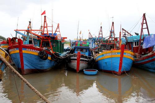 Tàu cá xa bờ neo đậu dài ngày khu vực Phước Tỉnh. Ảnh: Nguyễn Khoa