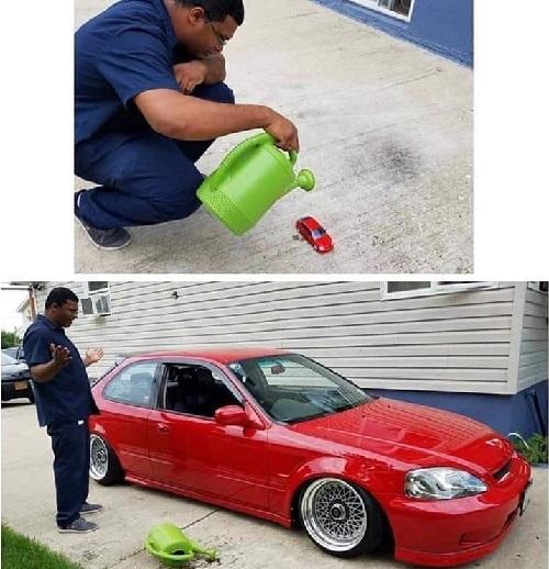 Trồng xe mô hình được xe hơi.