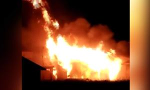 Cháy lớn tại viện nghiên cứu nông nghiệp ở Bình Định