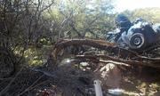 Tài xế Mỹ sống sót sau 6 ngày lao xe khỏi cao tốc, treo trên cây