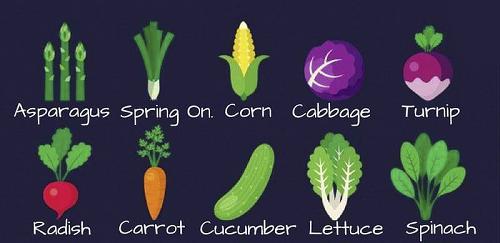Từ vựng tiếng Anh về 25 loài rau củ thường gặp