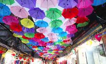 Con đường ô đẹp như trời Tây vừa xuất hiện ở Hà Nội
