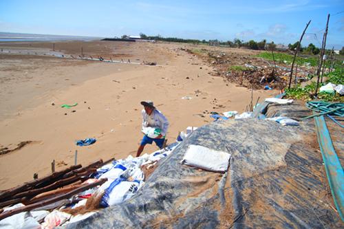 Người dân huyện biển Thạnh Phú dùng bao cát ngăn sạt lở. Ảnh: Hoàng Nam