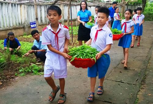Học sinh Trường tiểu học Nghĩa Chánh, TP Quảng Ngãi thu hoạch rau. Ảnh: Thạch Thảo.