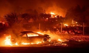 Người Mỹ khóc, cầu xin Chúa khi lái xe qua biển lửa