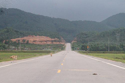 2,3 km đường tỉnh lộ 21 kéo dài do huyện Thạch Hà làm chủ đầu tư hoàn thành từ hai năm trước. Ảnh: Đức Hùng