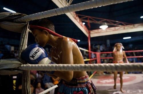 Muay Thái là con đường kiếm tiền và đổi đời của nhiều trẻ em nghèo Thái Lan. Ảnh: AFP.