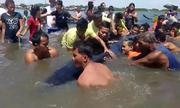 Giải cứu cá voi 20 tấn mắc kẹt trên bãi biển Philippines