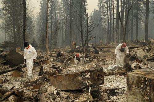 Lực lượng chức năng tìm kiếm thi thể nạn nhân trong đống hoan toàn ở thị trấn Paradise hôm 13/11. Ảnh: AP.