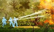 Gió mạnh 'tiếp sức' cho cháy rừng ở Mỹ thế nào?