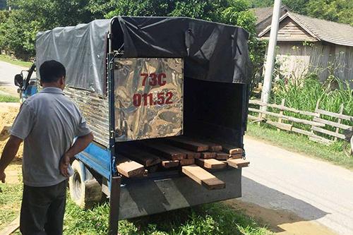 Súng kiểm lâm bị cướp cò, bắn trúng tài xế chở gỗ