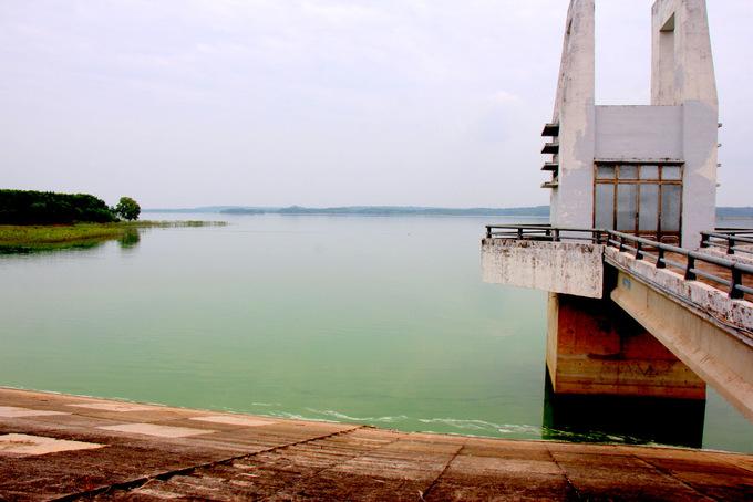 Hồ cấp nước sinh hoạt ở Bà Rịa - Vũng Tàu nổi váng xanh