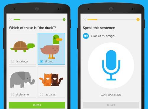 Duolingo. Ảnh: BI