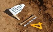 Hàn Quốc tìm thấy 5 hài cốt trong Chiến tranh Triều Tiên ở DMZ