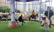 Ngựa thật được dùng làm vòng xoay tại khu vui chơi ở Trung Quốc