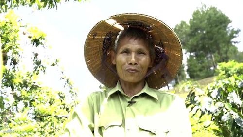 Lão nông Ngô Việt Hùng tại vườn mận - cà phê. Ảnh: Bizmedia