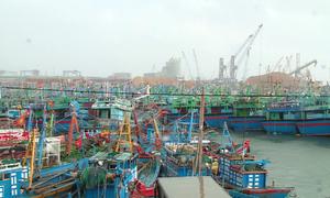Gần 400 tàu về cảng cá Quy Nhơn tránh bão
